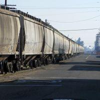 The tailend of a San Joaquin Valley Railroad frieght train coming down E California Ave, 1/2013, Фресно