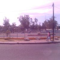 Parque Vicente Guerrero, Хебер