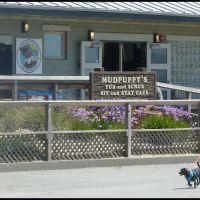 Point Isabel Dog Park, Richmond, CA, Эль-Серрито