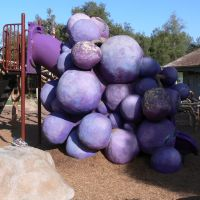 Grape Day Park, Escondido, California, Эскондидо