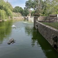 Ralph Mitchel Zoo Duck Pond, Индепенденс