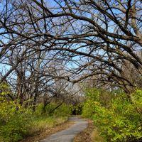 Chisholm Creek Park - Wichita, KS, USA, Кечи