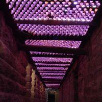 Catacomb Corridor, Конкордиа