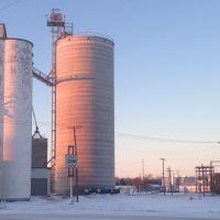 Pawnee County Coop, Ларнед