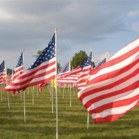Field of Freedom, flags up close, Merriam, KS, Мерриам