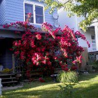 house for sale, Миссион-Хиллс