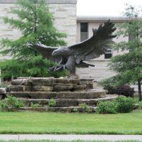 Eagle, Washburn University, Topeka, Овербрук