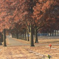 Evergreen Cemetery., Палмер