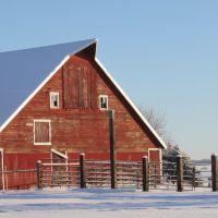 Red Barn, Barn # Eight, Палмер