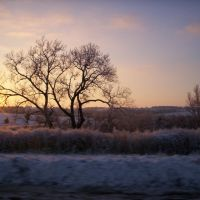 Cold Winter Sunset, Палмер