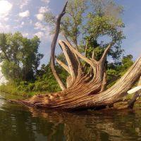 Drift Wood Crystal Lake Wichita, Парк-Сити