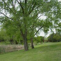 Oakdale Park, Kenwood Park Bridge, Northeast side, Салина