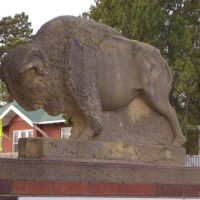 small buffalo; limestone sculpture,Hays,KS, Хэйс