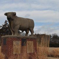 Hereford bull, limestone sculpture by Pete Felten, Hays, KS, Хэйс
