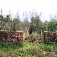 McDaniel Cementary, Хорс-Кейв