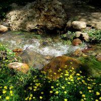 spring runoff, Айдахо-Спрингс