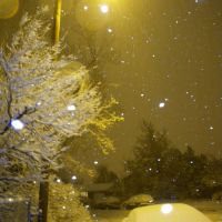 Late night snofall. November 14, 2009, Аурора