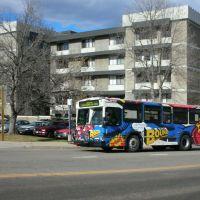 RTD Bus #3832 (Bound), Аурора