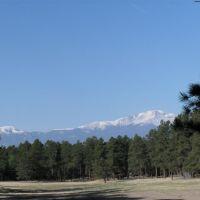 LA FORET, BLACK FOREST COLORADO, Блэк-Форест
