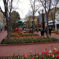 Downtown Boulder Colorado, Spring 2006, Боулдер