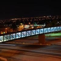 RTD Bridge at Night, Вестминстер