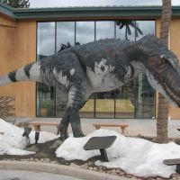 Dinosaur Resource Center, Вудленд-Парк