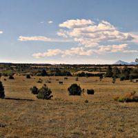 Southern Colorado, Лас-Анимас