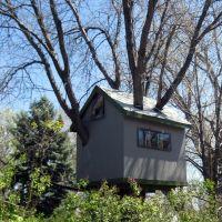 a fun treehouse, Лейквуд