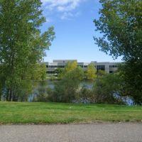 pond view, Лейксайд