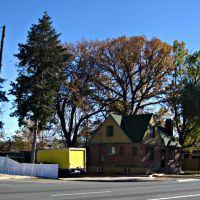 Wheat Ridge tree city USA, Лейксайд