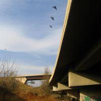 under the roads, Лейксайд