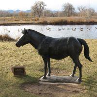 Horse Statue in Hudson Gardens, Литтлетон