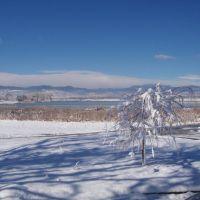 Egyedül a téli napsütésben - Alone  in the winter sunshine, Нанн