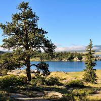 Eleven Mile Reservoir, Lake George Colorado, Свинк