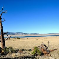 Eleven Mile Reservoir, Свинк