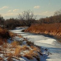 Clear Creek, Шеррелвуд