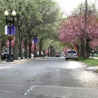 Park Ave near University Ave, Бриджпорт