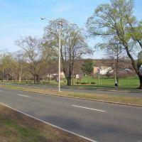 Memorial Boulevard, Бристоль