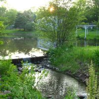 Dam on Sawmill Brook from Atkins St., Middletown - May 14 2010, Вест-Хартфорд