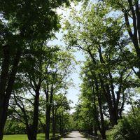 Sabine Farm Road, Гринвич
