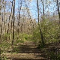 Blue Trail, Гринвич