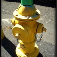 Fire Hydrant, Данбури