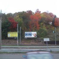 fall color(7), Ист-Хавен