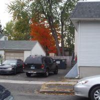 Fall color (6), Ист-Хавен