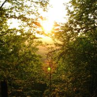 Sun setting through trees from Mattabesett Trail at N end of Lamentation Mtn. - May 24 2010, Норволк