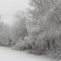 view from carillon dr, winter, Роки-Хилл