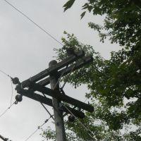 Early CL&P Buckarm Pole, Торрингтон