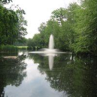 Chase: Pond, Уотербури