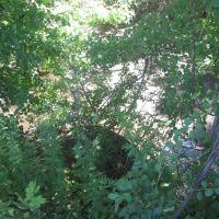 Turney Creek goes under the traffic circle, Файрфилд