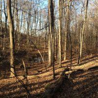 Small Highland Pond Aside Tower Path, Talcott Mountain, 11222012, Фармингтон